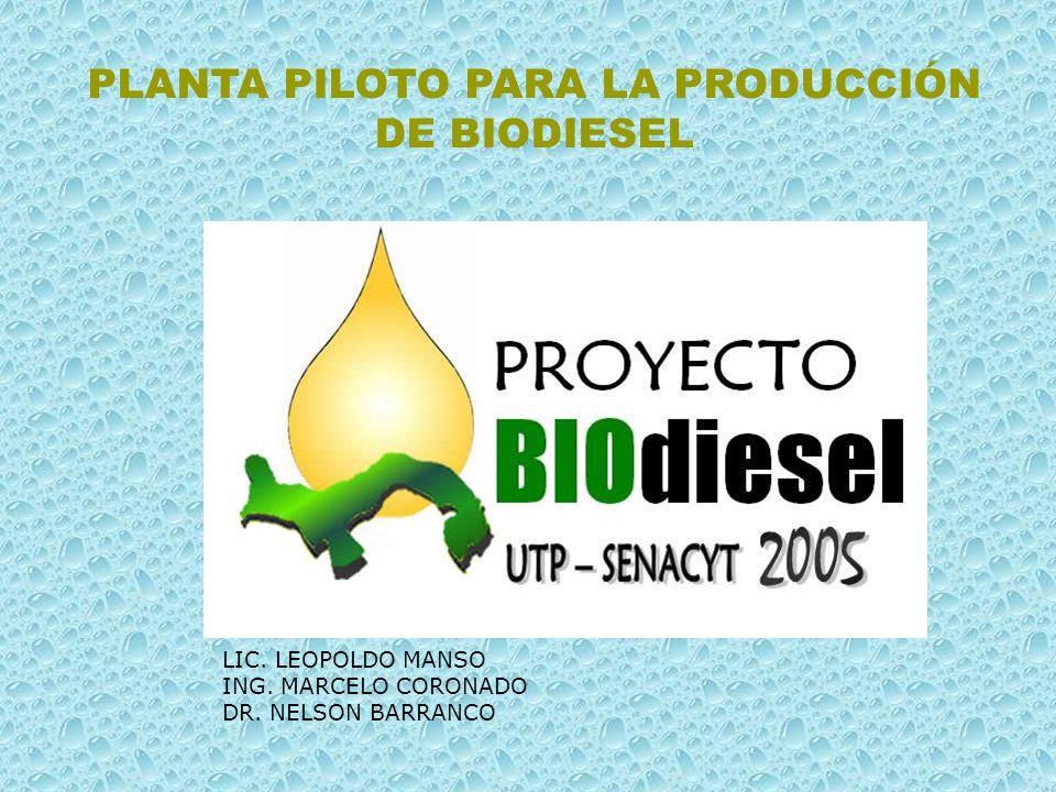 PLANTA PILOTO PARA LA PRODUCCIÓN DE BIODIESEL