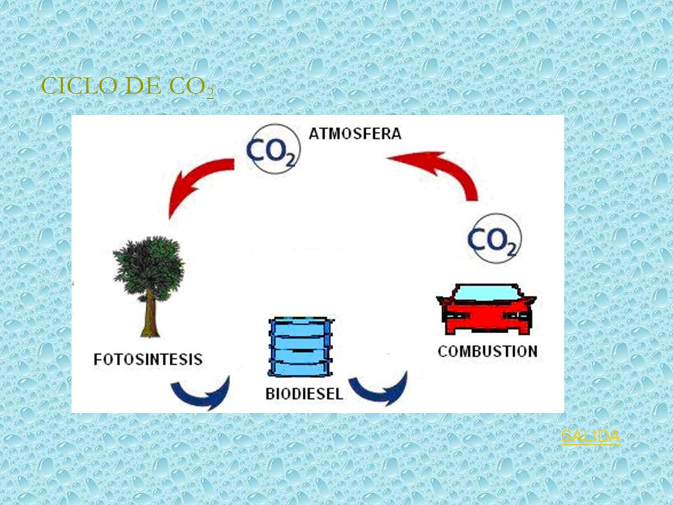 CICLO DE CO2 SALIDA