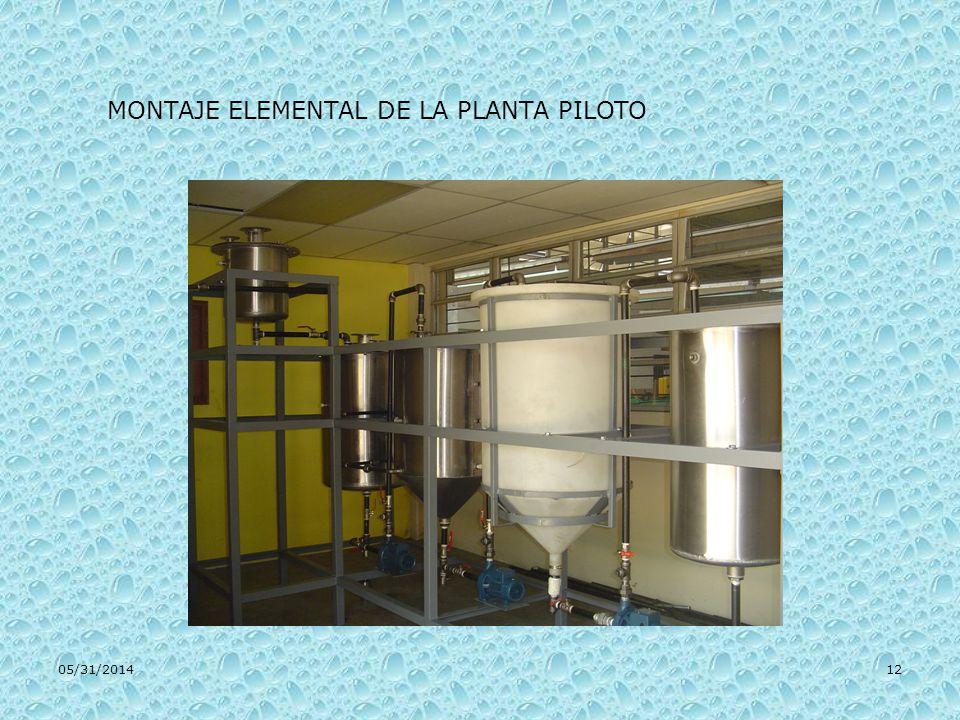 MONTAJE ELEMENTAL DE LA PLANTA PILOTO
