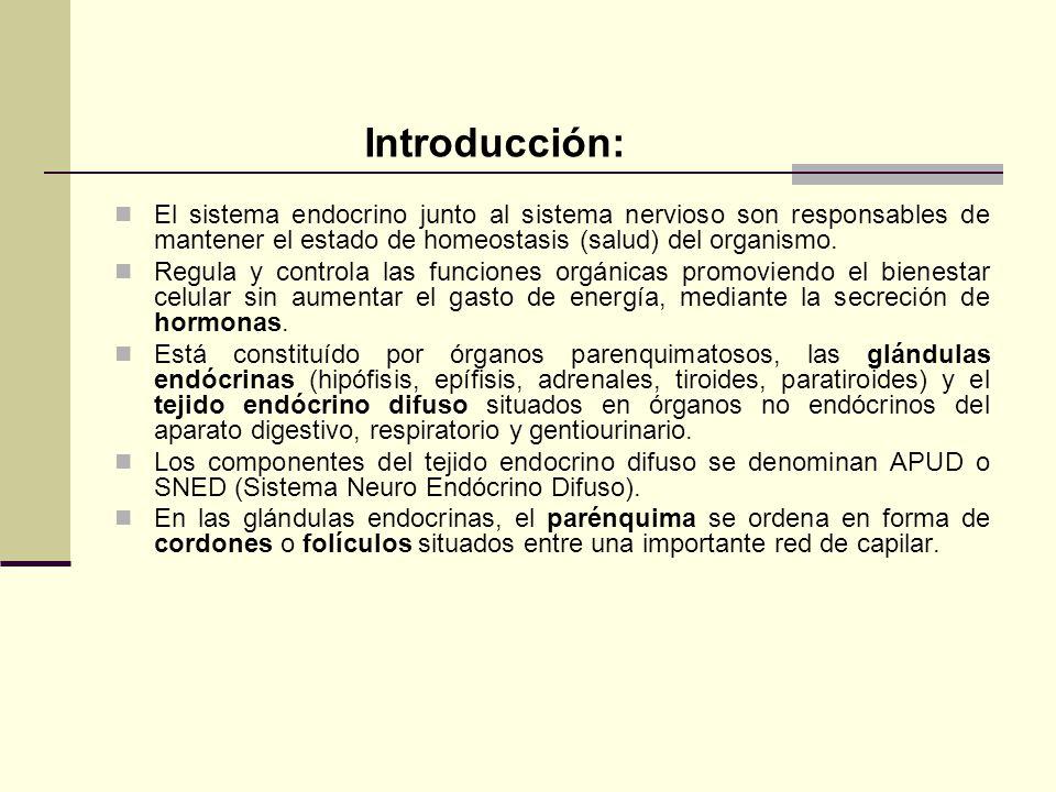 Introducción: El sistema endocrino junto al sistema nervioso son responsables de mantener el estado de homeostasis (salud) del organismo.