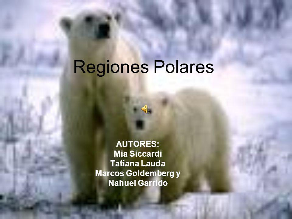 AUTORES: Mia Siccardi Tatiana Lauda Marcos Goldemberg y Nahuel Garrido