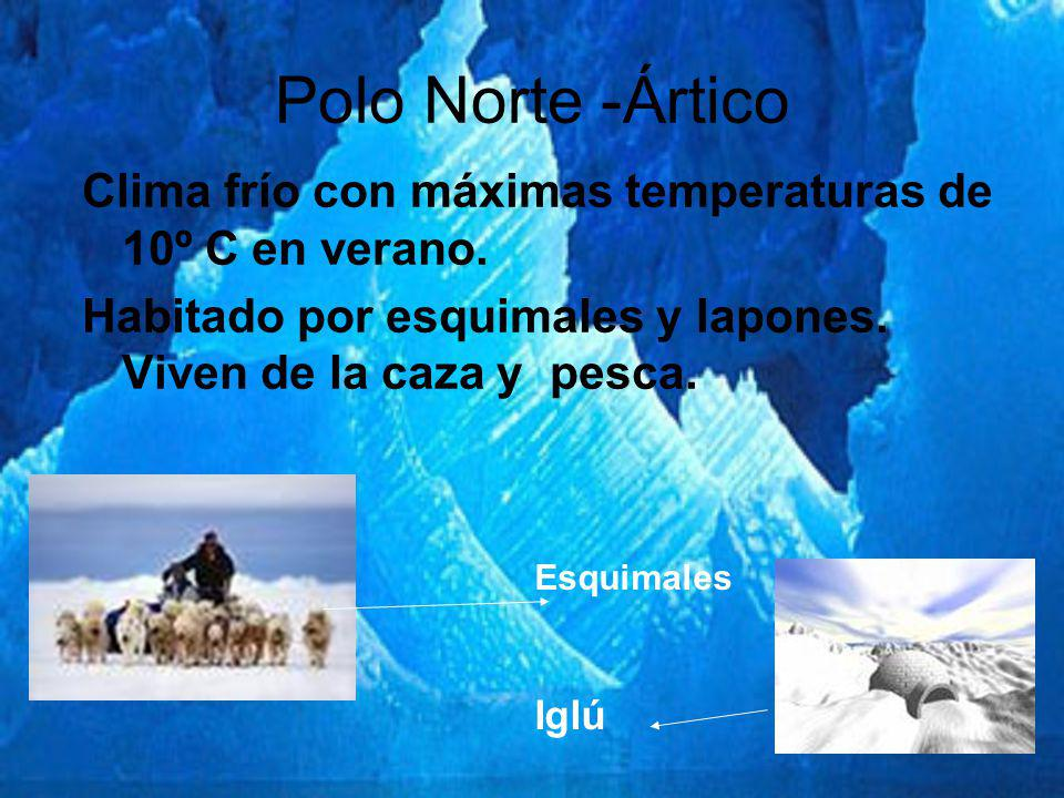 Polo Norte -Ártico Clima frío con máximas temperaturas de 10º C en verano. Habitado por esquimales y lapones. Viven de la caza y pesca.