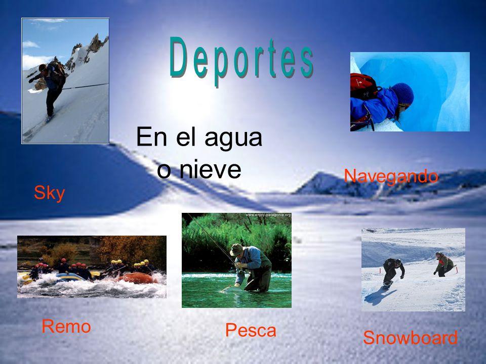 Deportes En el agua o nieve Navegando Sky Remo Pesca Snowboard