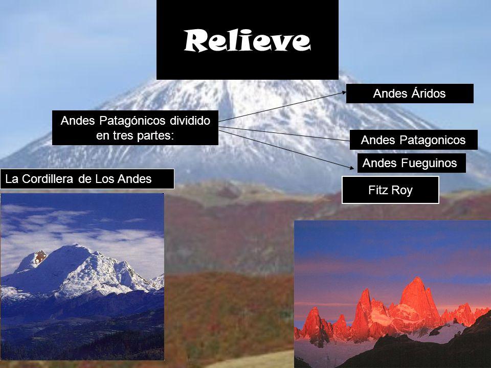 Andes Patagónicos dividido en tres partes: