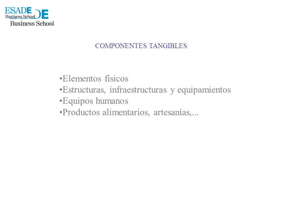 COMPONENTES TANGIBLES