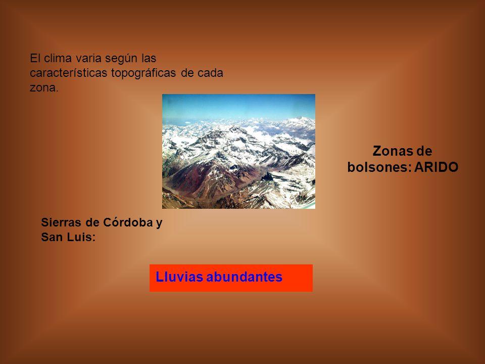 Zonas de bolsones: ARIDO
