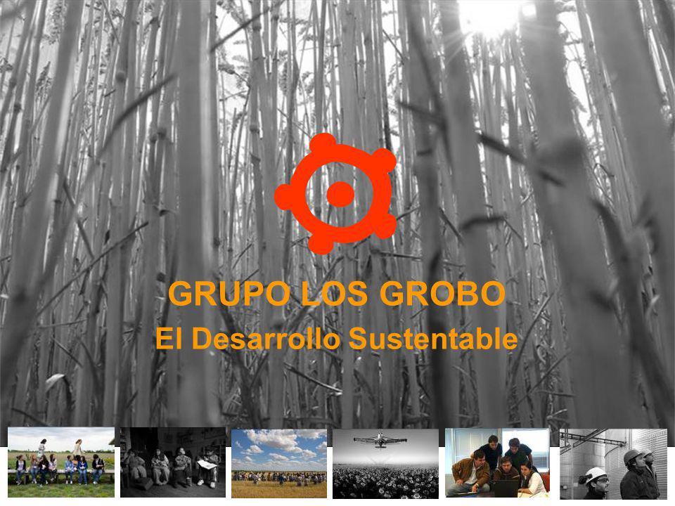 El Desarrollo Sustentable
