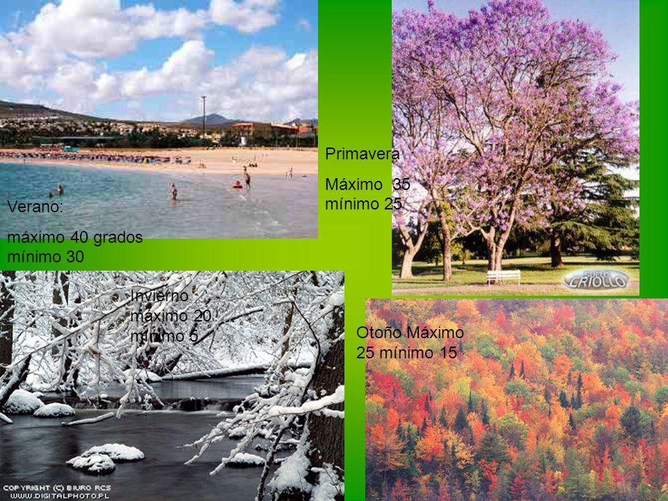 Primavera Máximo 35 mínimo 25. Verano: máximo 40 grados mínimo 30. Invierno máximo 20 mínimo 5.