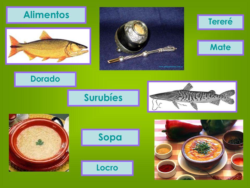 Alimentos Surubíes Sopa