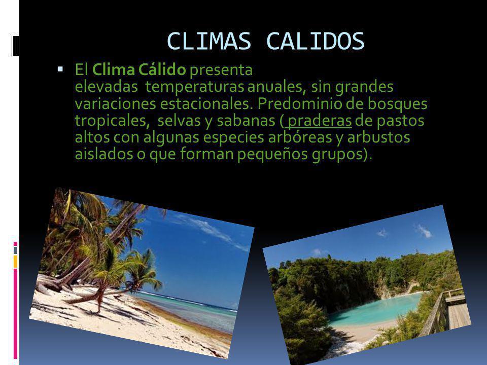 CLIMAS CALIDOS