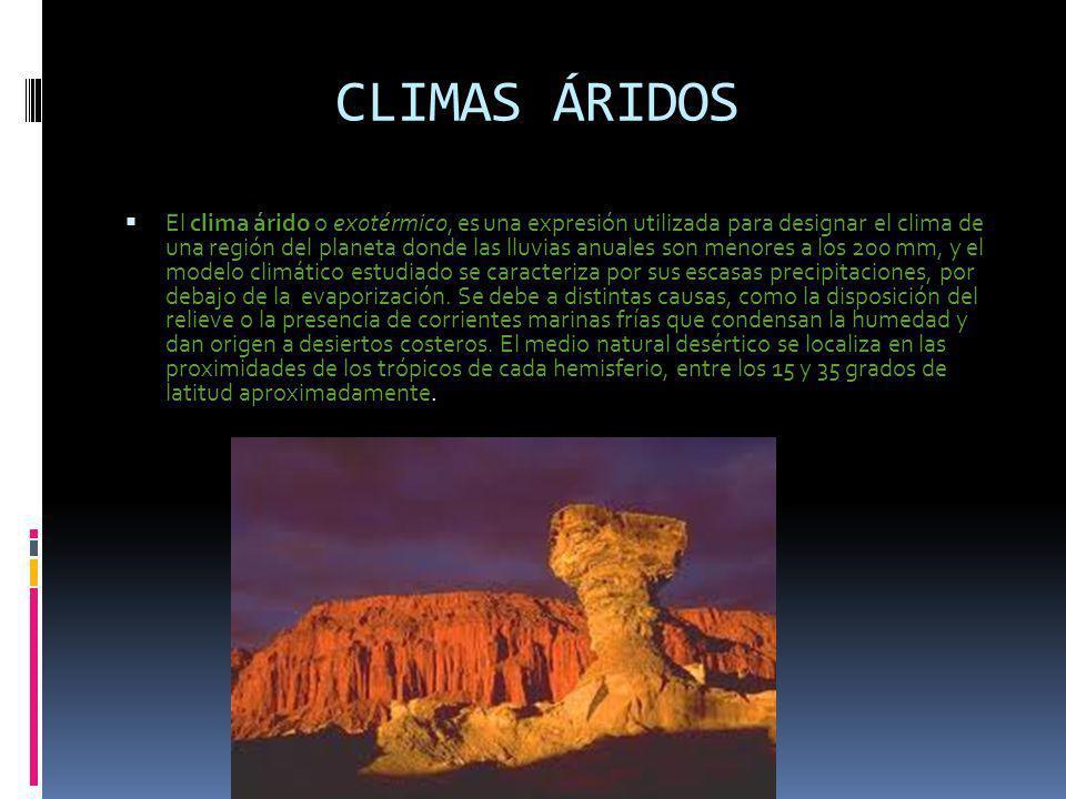 CLIMAS ÁRIDOS