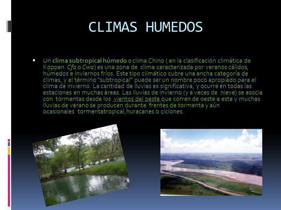 CLIMAS HUMEDOS