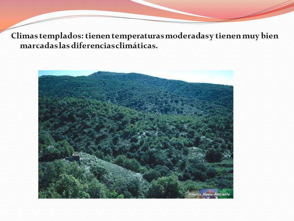 Climas templados: tienen temperaturas moderadas y tienen muy bien marcadas las diferencias climáticas.