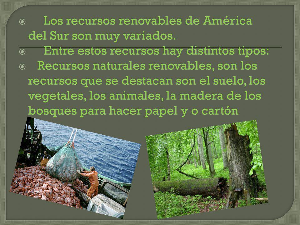 Los recursos renovables de América del Sur son muy variados.