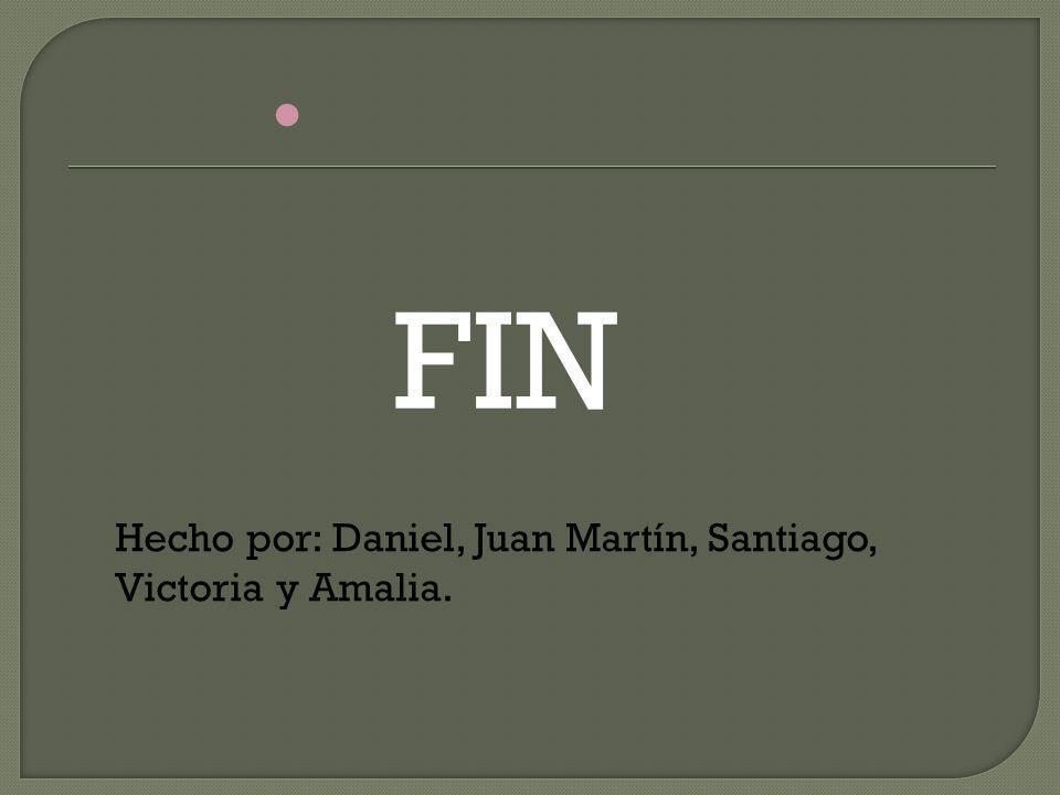 FIN Hecho por: Daniel, Juan Martín, Santiago, Victoria y Amalia.