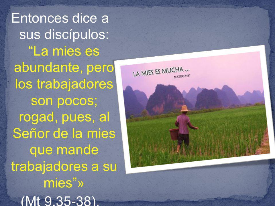Entonces dice a sus discípulos: La mies es abundante, pero los trabajadores son pocos; rogad, pues, al Señor de la mies que mande trabajadores a su mies » (Mt 9,35-38).