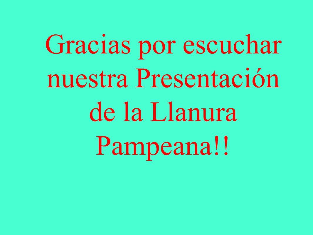 Gracias por escuchar nuestra Presentación de la Llanura Pampeana!!