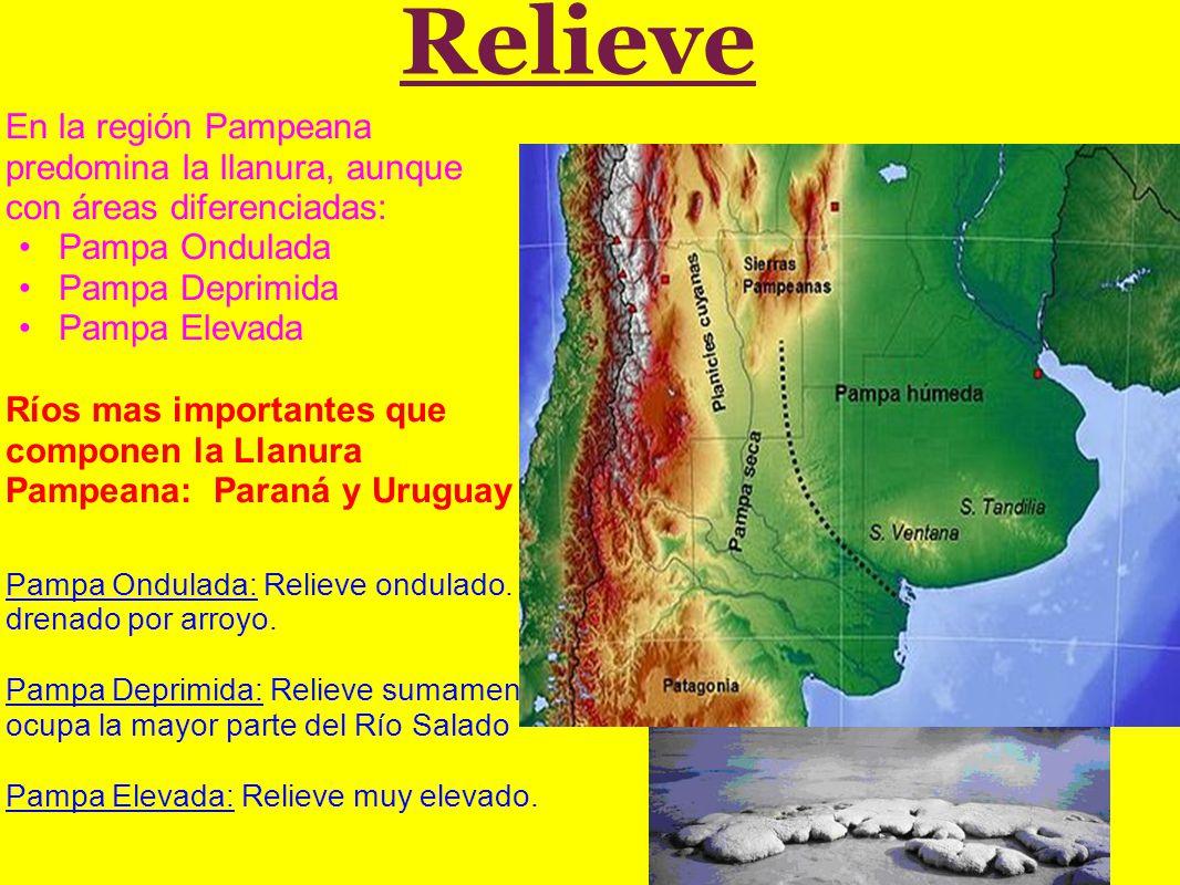 Relieve En la región Pampeana predomina la llanura, aunque con áreas diferenciadas: Pampa Ondulada.