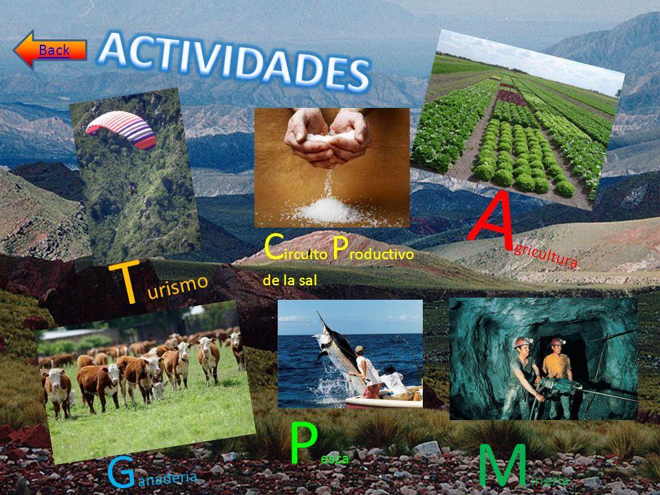 Agricultura Turismo Pesca Mineria ACTIVIDADES Ganaderia