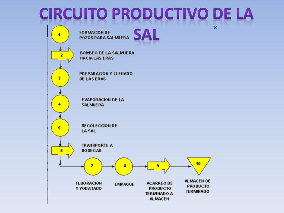 Circuito productivo de la sal