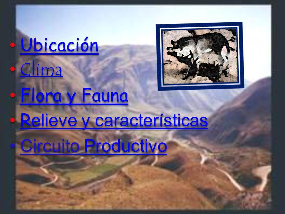 Ubicación Clima Flora y Fauna Relieve y características Circuito Productivo
