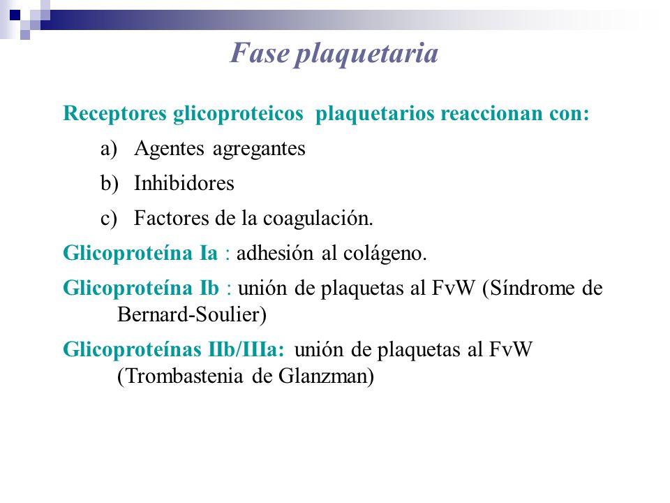 Fase plaquetaria Receptores glicoproteicos plaquetarios reaccionan con: Agentes agregantes. Inhibidores.