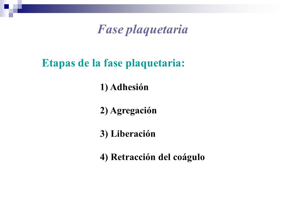 Fase plaquetaria Etapas de la fase plaquetaria: 1) Adhesión