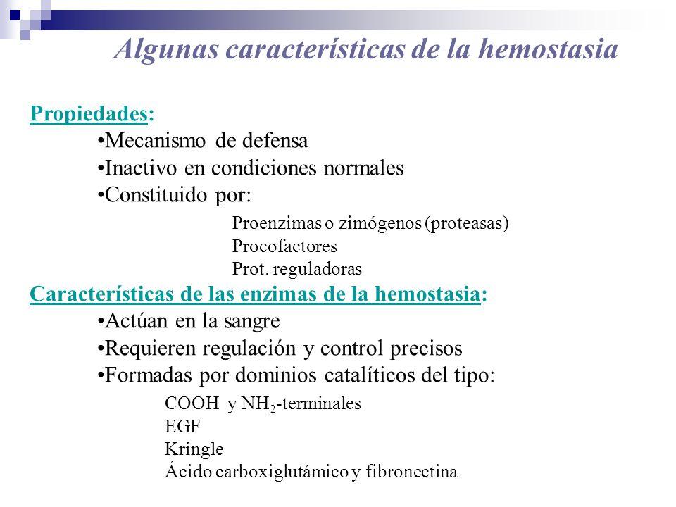 Algunas características de la hemostasia