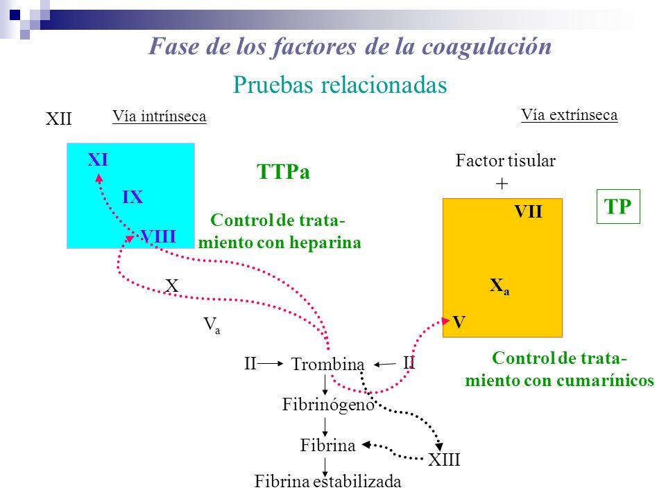 Fase de los factores de la coagulación miento con cumarínicos