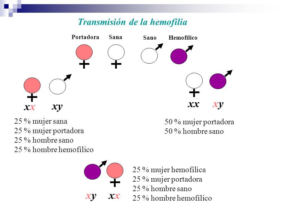 xx xy xy xx xy xx Transmisión de la hemofilia 25 % mujer sana