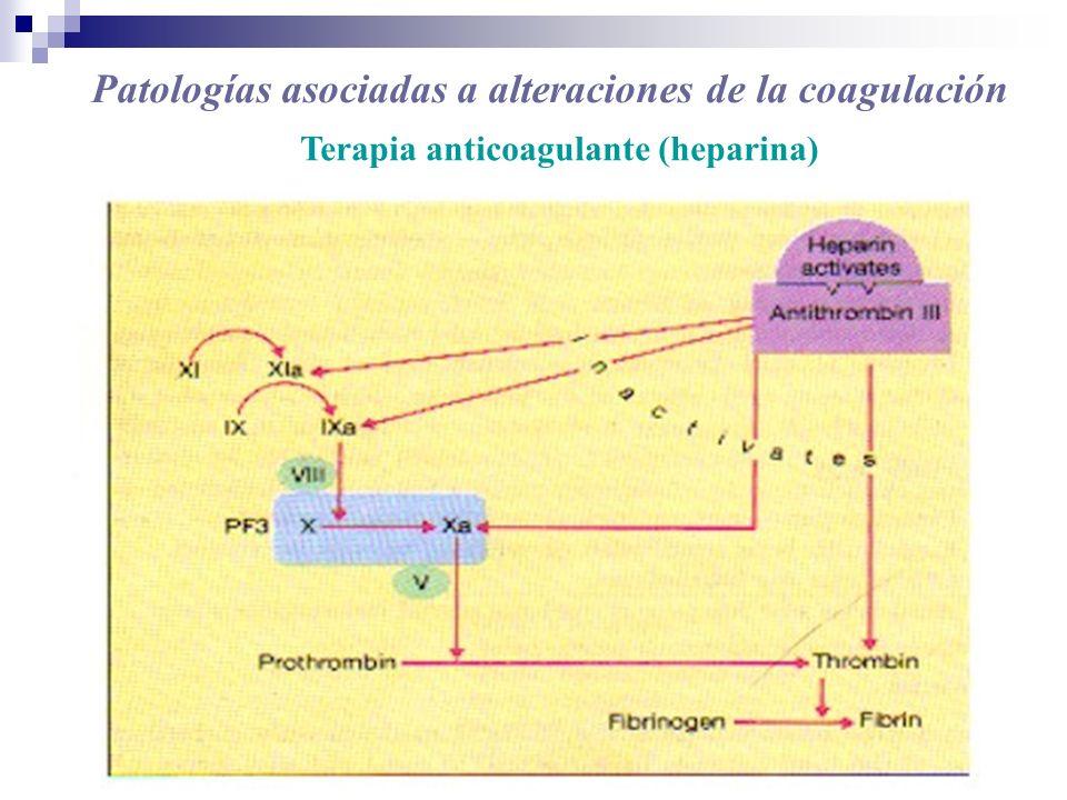 Patologías asociadas a alteraciones de la coagulación