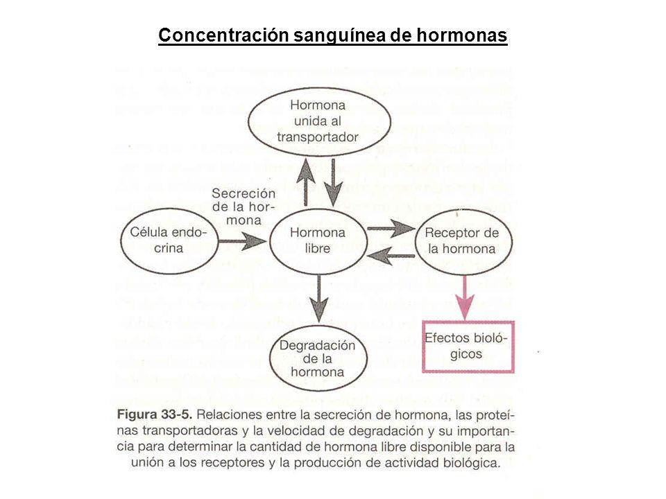 Concentración sanguínea de hormonas