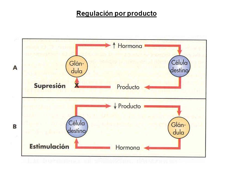 Regulación por producto