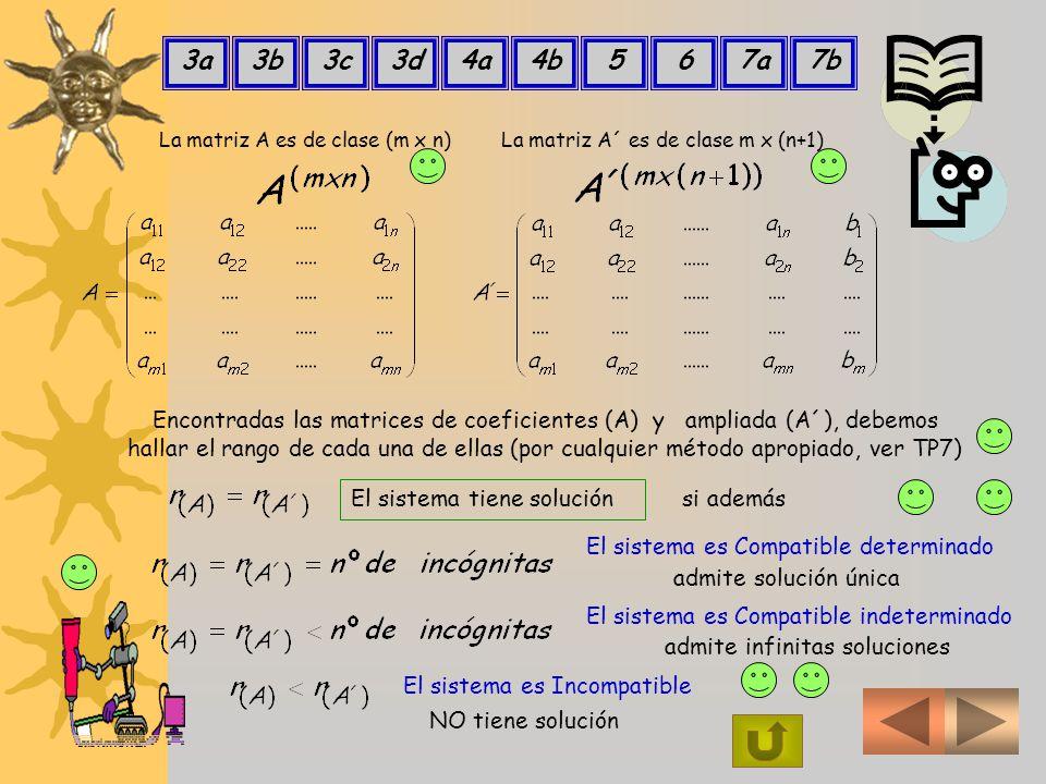 3a 3b. 3c. 3d. 4a. 4b. 5. 6. 7a. 7b. La matriz A es de clase (m x n) La matriz A´ es de clase m x (n+1)