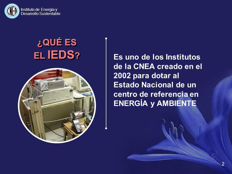 Instituto de Energía y Desarrollo Sustentable