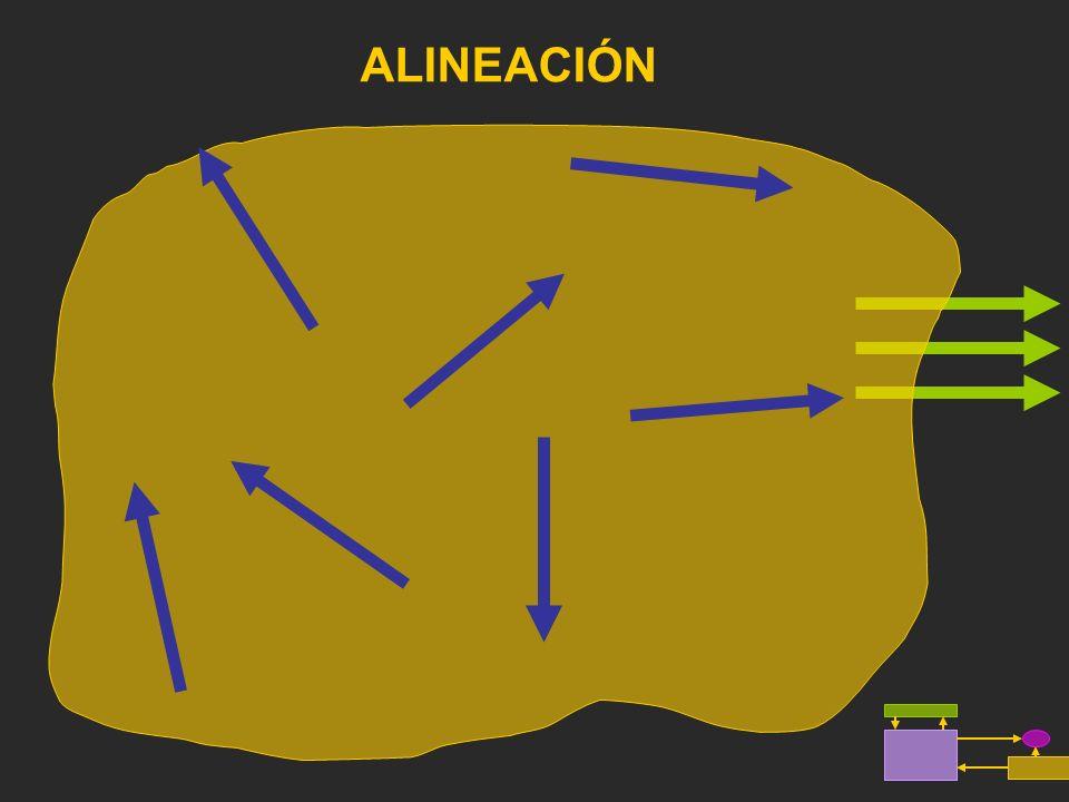 ALINEACIÓN