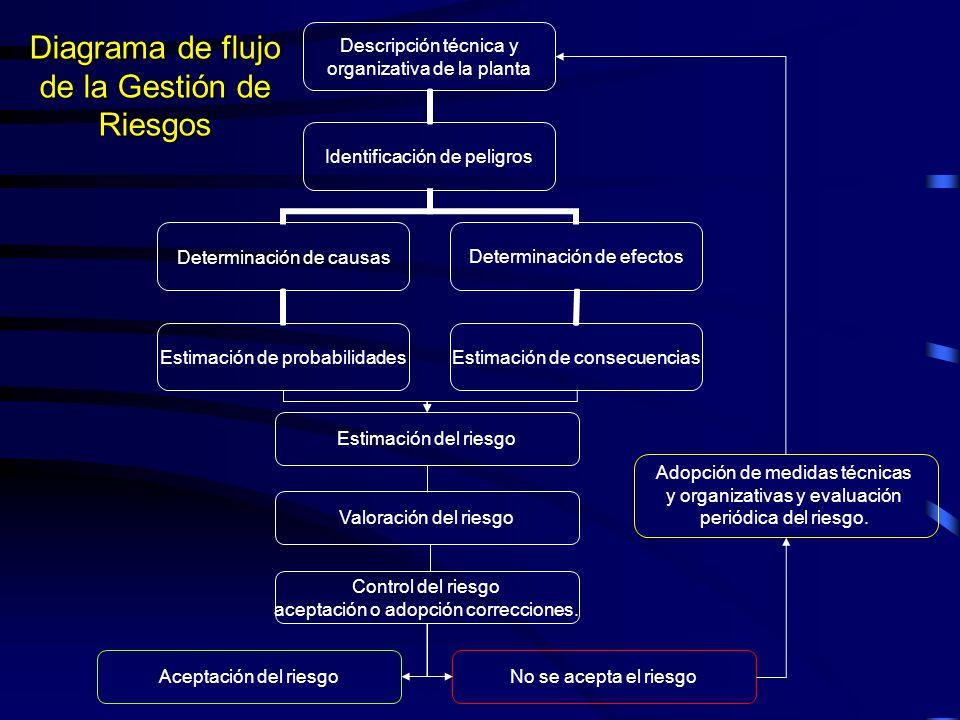 Diagrama de flujo de la Gestión de Riesgos