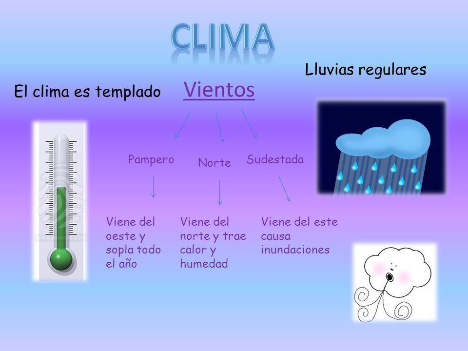 Clima Vientos Lluvias regulares El clima es templado Pampero Sudestada