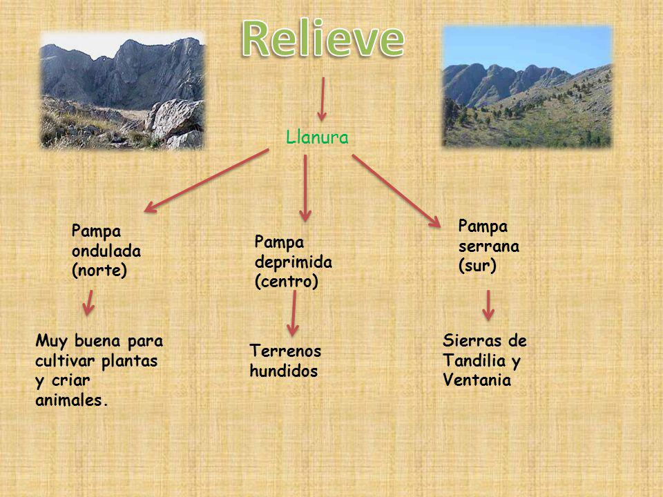 Relieve Llanura Pampa serrana (sur) Pampa ondulada (norte)