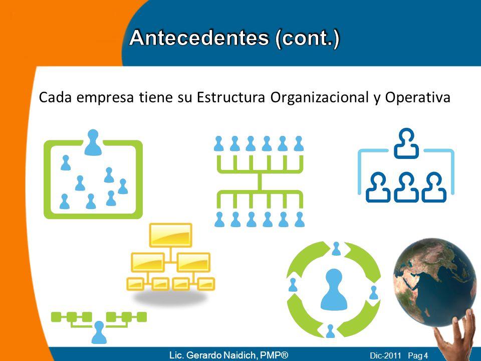 Antecedentes (cont.) Cada empresa tiene su Estructura Organizacional y Operativa.