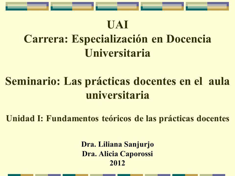 Seminario: Las prácticas docentes en el aula universitaria