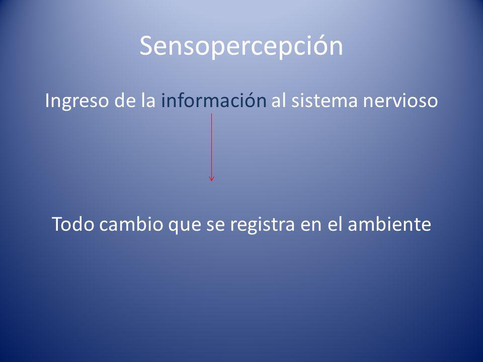 Sensopercepción Ingreso de la información al sistema nervioso Todo cambio que se registra en el ambiente