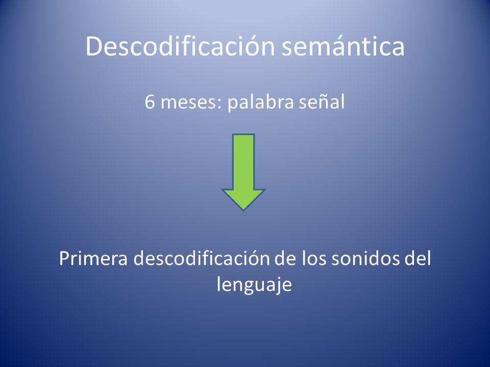 Descodificación semántica