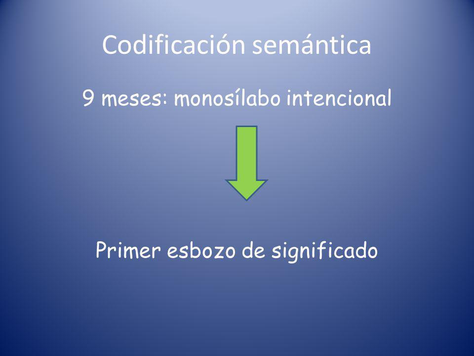 Codificación semántica