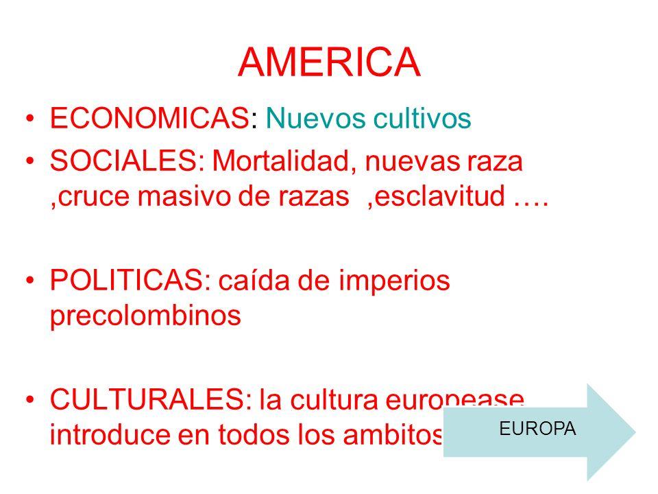 AMERICA ECONOMICAS: Nuevos cultivos