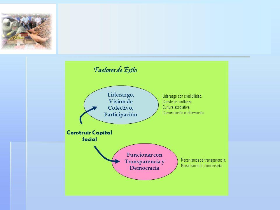 Factores de Éxito Construir Capital Social Liderazgo,