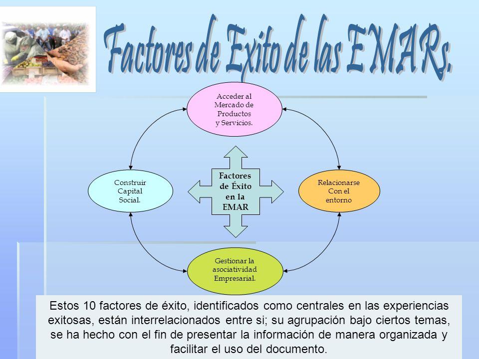 Factores de Exito de las EMARs.