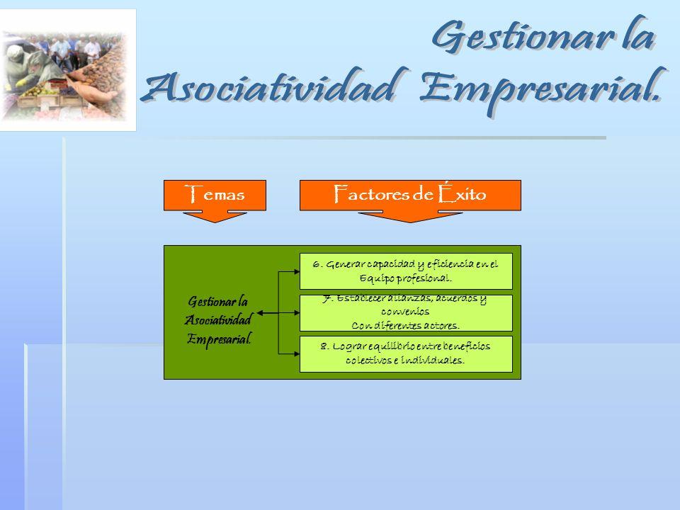 Asociatividad Empresarial.