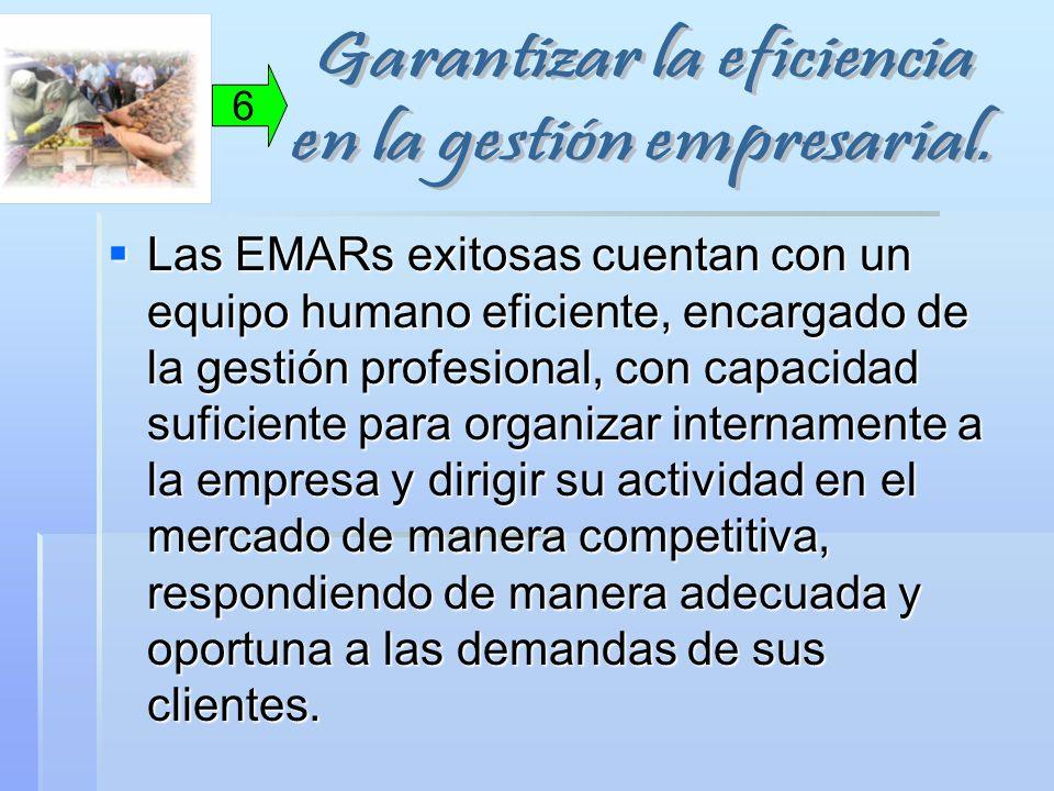 Garantizar la eficiencia en la gestión empresarial.