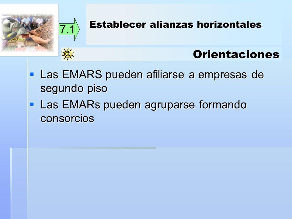 Las EMARS pueden afiliarse a empresas de segundo piso